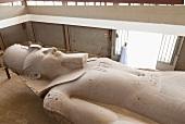 Statue of Ramses II near Cairo, Giza, Egypt