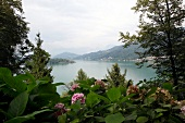 View of Lake Lugano from Grotto Sassalto in Caslano, Ticino, Switzerland