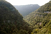 View of wild canyon Gorges de Nouailles in Franche-Comte, France
