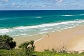 View of beach behind Indian head rock, Fraser Island, Queensland, Australia