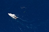 Boat at Ningaloo Reef in Australia, Aerial view