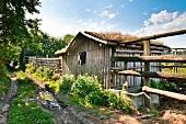 Polen: Ermland-Masuren, Masuren, nahe Mikolajki, Pferdestall