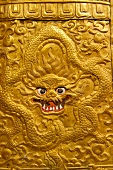 Close-up of monster carved on column at Punakha Dzong, Bhutan