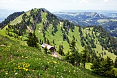 View of mountain hut Staufner house, Oberstaufen, Bavarian Swabia, Germany