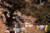 View of meditation house and buntings on mountain, Bhutan