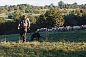 Martin Ernst walking with sheep in Valley Lauterbach, Blieskastel, Saarland, Germany