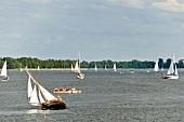 Sailboats in Masurian Lake District, Mikolajki, Warmia Masuria, Poland