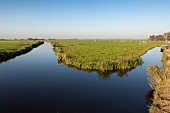 View of water and grassland in Ransdorp, Noord, Amsterdam, Netherlands