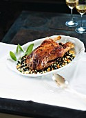 Stuffed Barbary duck on black balsamic lentils