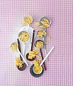 Various types of pasta on ladles on a pink-checked cloth