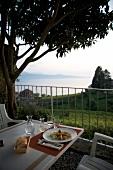 Genfer See, Kanton Waadt, Weinberge Lavaux, Abendessen