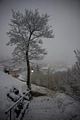 Genfer See, Kanton Waadt, Riviera- Pays-d¿Enhaut, Château-d¿Oex, Dorf