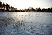 View of frozen landscape of Lapland at sunset, Finland