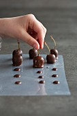 Chocolate coated cognac cherries being left to dry