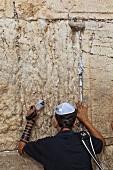 Rear view of man praying on Wailing Wall, Jerusalem, Israel