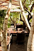Dinning area in Phinda Forest Lodge, South Africa,