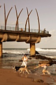 Women and dogs on beach with Umhlanga Pier and rocks, Sri Lanka