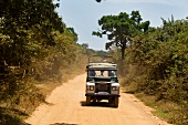 Jeep on dirt track in forest at Yala National Park, Sri Lanka