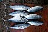 Close-up of fresh fish on wooden table