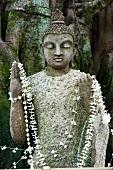 Close-up of Buddha statue with flower necklace, Colombo, Sri Lanka