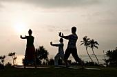 People performing Tai Chi at Barberyn Reef Ayurveda Resort, Weligama, Sri Lanka