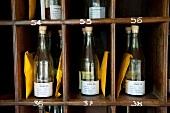 Close-up of bottles in numbered shelves at Barberyn Reef Ayurveda Resort in Sri Lanka
