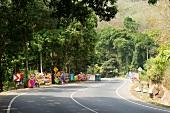 View of auto rickshaw on street of Sri Lanka