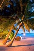 Palmenlichtung, Abendessen, Insel Veliganduhuraa, Malediven