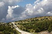 View of Spil Dagi National Park with road in Aegean, Turkey