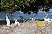 View of trees and pebbles on beach in Akbuk, Aegean, Turkey