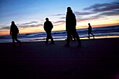 People walking on beach at sunset, Sylt, Germany