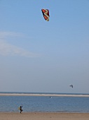 People doing kite surfing on beach in Spiekeroog, Lower Saxony, Germany