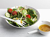 A spinach, cucumber, tomato and bean sprout salad