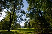 Lettland, Riga, Schloss Mesothen. Schlosspark