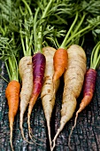Various carrots on a wooden surface