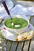 Asparagus and stinging nettle soup