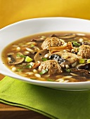 Wild mushroom soup with orzo pasta and meat dumplings