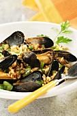 Miesmuschel-Paella