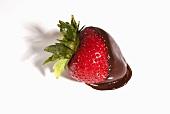 Dark Chocolate Covered Strawberry on White Background