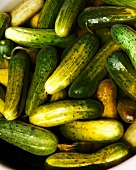 Cucumbers in Pickling Marinade