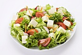 Green Salad with Cubes of Cheese; White Background
