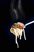 Linguine with a minced meat sauce, tomatoes and basil on a fork