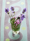 Lavender flowers in a small vase