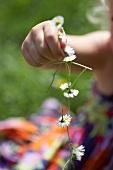 Kinderhand hält Kette aus Gänseblümchen