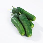 Mini cucumbers (cucumis sativus petita)