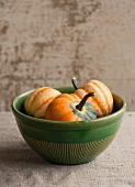 Maine Grown Celebration Squash in a Bowl