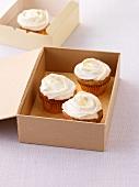Bananen-Cupcakes in Karton