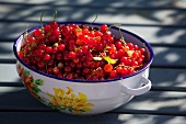 Red currants in an enamel bowl
