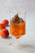 Mousse au chocolat with apricots compote