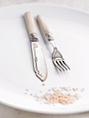 Fish cutlery on a plate
